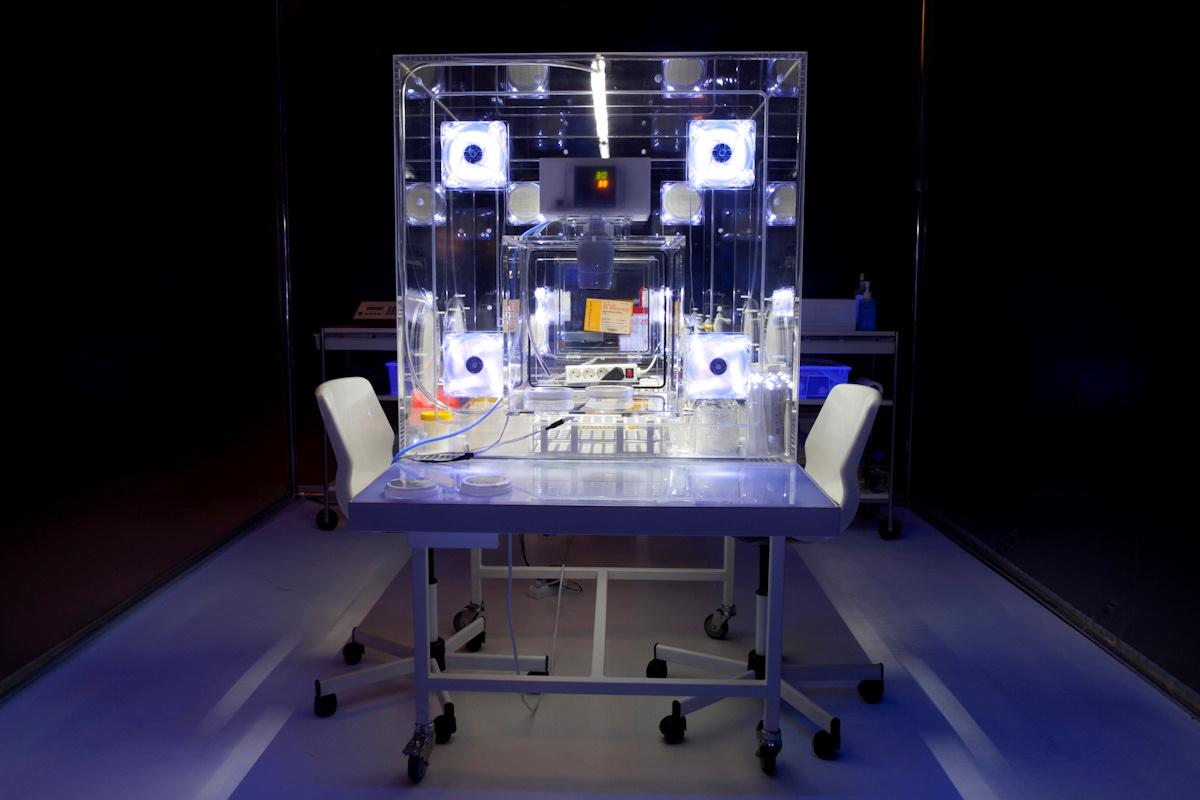 Ausstellung CYNETART 2012